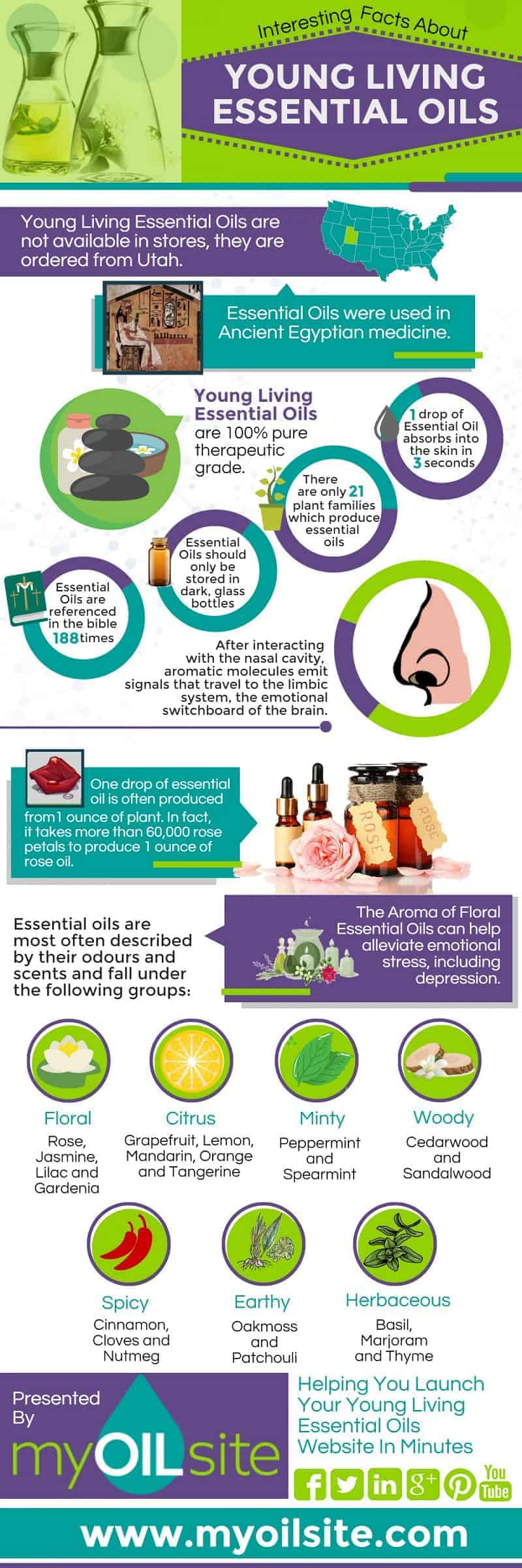 Essential Oil Business Facts