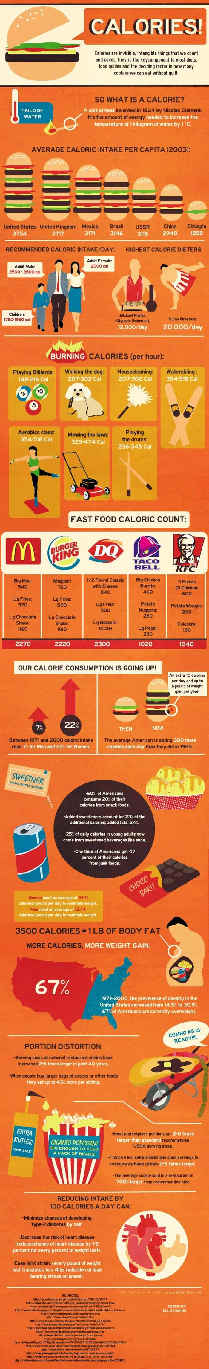 calories in food Infographic