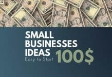 small business ideas under 100$