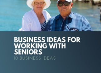 business ideas working with seniors