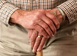 Senior Companion Business from Home