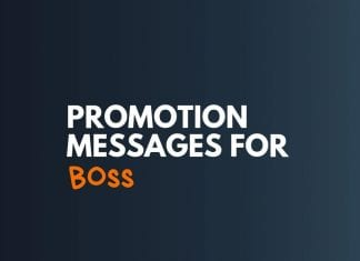 Promotion Messages for Boss