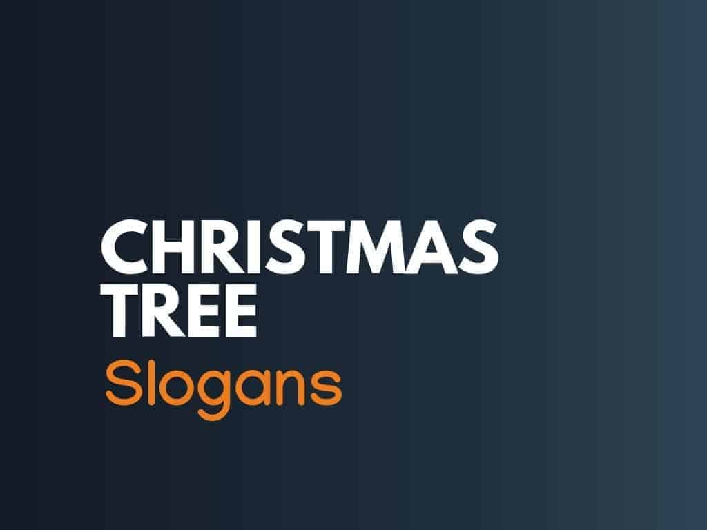 122 Clever Christmas Tree Slogans And Sayings Thebrandboy Com