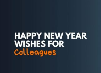 Happy New Year Wishes to Colleagues