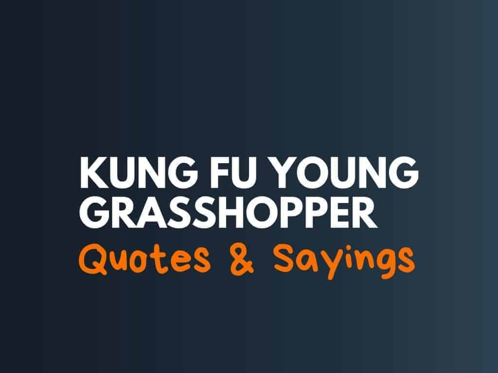 115 Best Kung Fu Young Grasshopper Sayings And Quotes