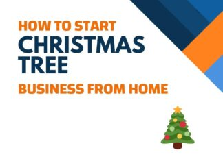 Christmas Tree Business from Home