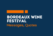 bordeax wine festival messages